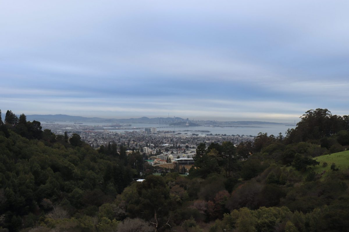 Fellows visited the Lawrence Berkeley National Laboratory - owners of possibly the finest view from a science facility in the world!